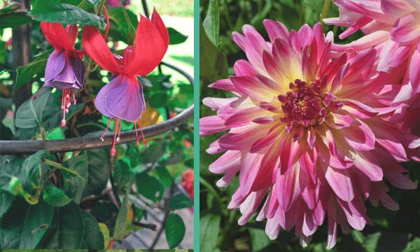 parc-floral-orleans