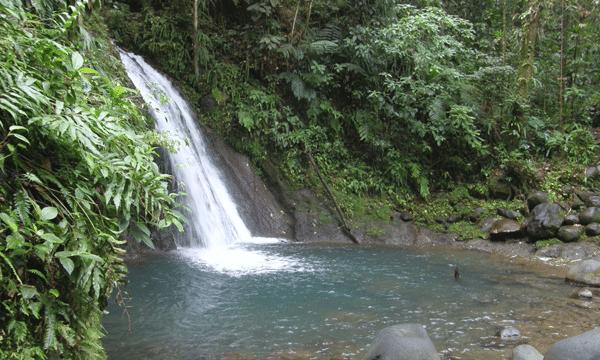 cascade-ecrevisses