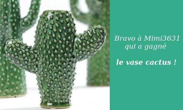 gagnant-vase-cactus